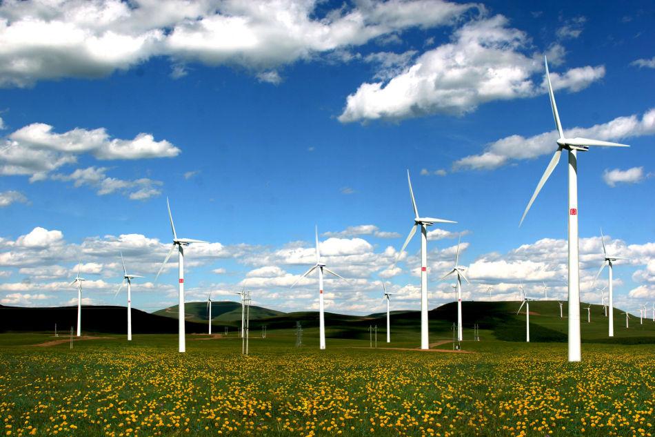 Les investissements énergétiques Chinois dans les pays BRI : un progrès d'énergie propre ou de pollution accrue ?